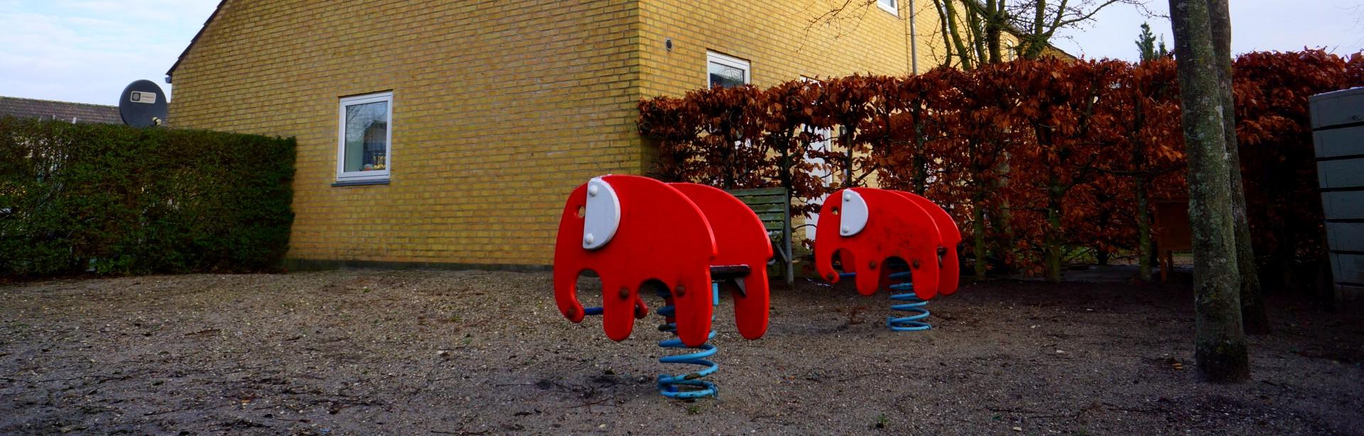Elefanter i Porsehaven